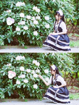 是关关是兔子小姐以「Lolita fashion」为主题投稿的照片(2017/11/15)