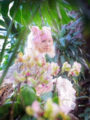是Yushiteki以「Lolita」为主题投稿的照片(2018/01/14)