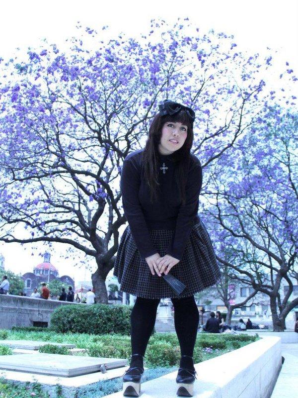 是Nekopan87以「Cherry Blossoms」为主题投稿的照片(2018/04/06)