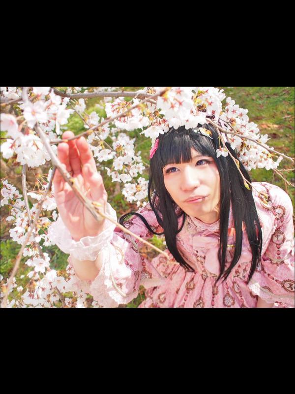 tuyahime_neko's 「Ribbon」themed photo (2018/04/12)