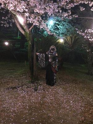バジリスクって所でなんて意味?'s 「キューティフラッシュ」themed photo (2017/04/09)