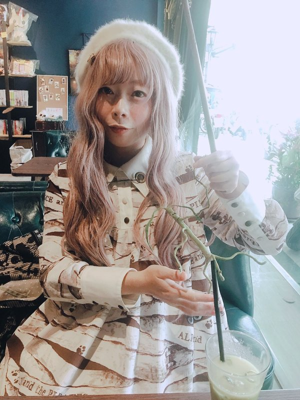 是染井染以「Lolita」为主题投稿的照片(2019/03/05)
