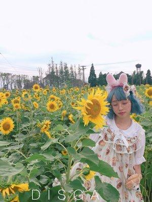 是DISGA以「Angelic pretty」为主题投稿的照片(2017/06/22)