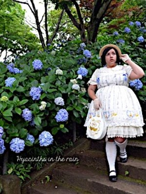 Hyacinths-in-the-rain's 「metamorphose」themed photo (2017/07/09)